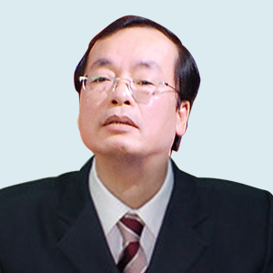 Infographic Chinh phu cua Thu tuong Nguyen Xuan Phuc hinh anh 14